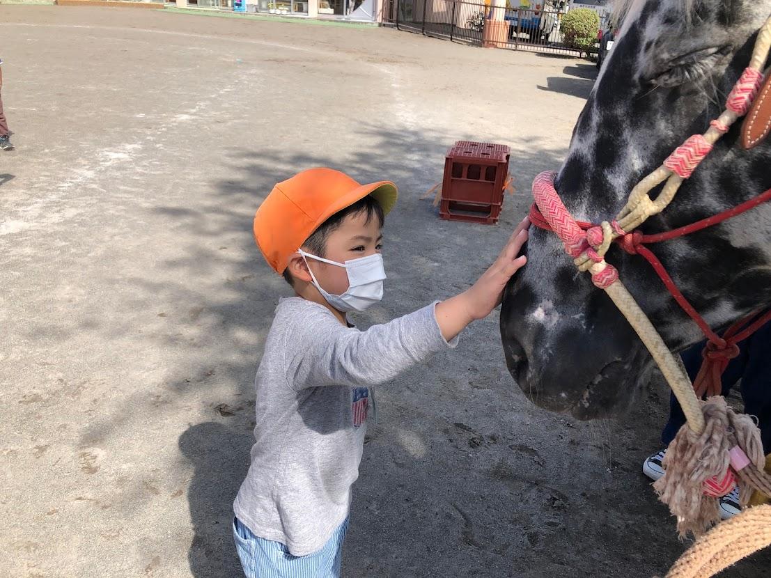 乗馬体験(年中) 1
